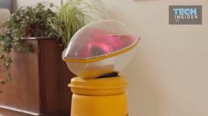 Un incubateur qui permettrait d'être enceinte… à distance !