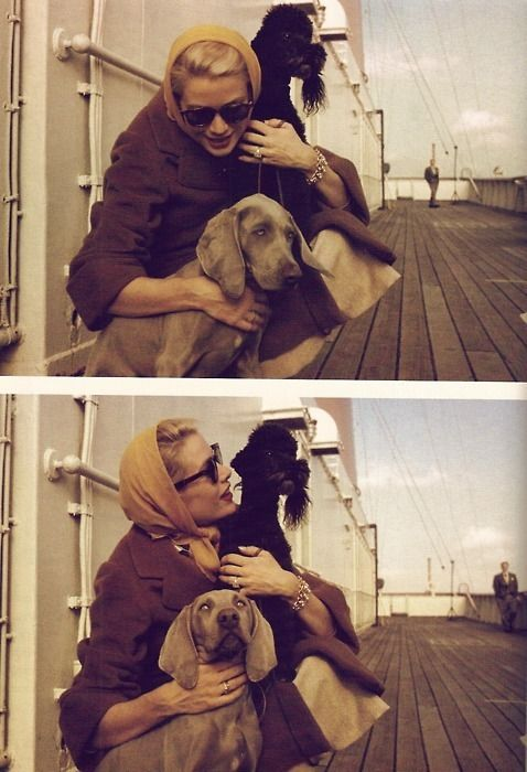 Grace Kelly en route to be married in Monaco with her poodle and Weimaraner.