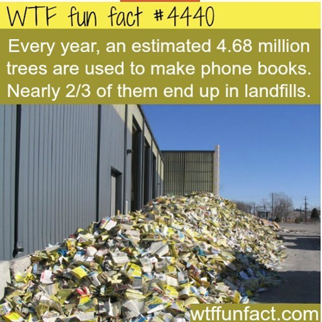 """17.4k Likes, 175 Comments - WTF FUN FACTS. (@wtffunfacts) on Instagram: """"#wtffunfacts"""" #recyclingfacts"""