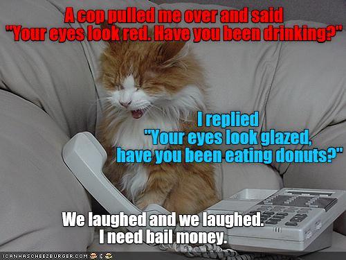 Don't joke with a cop (SirNottaguy-Imadad)
