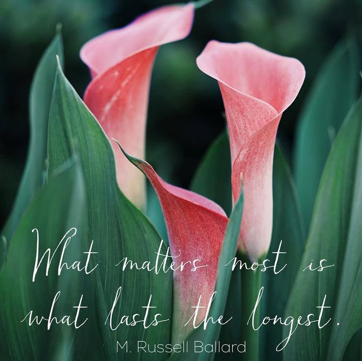 """What matters most is what lasts the longest."" M. Russell Ballard 