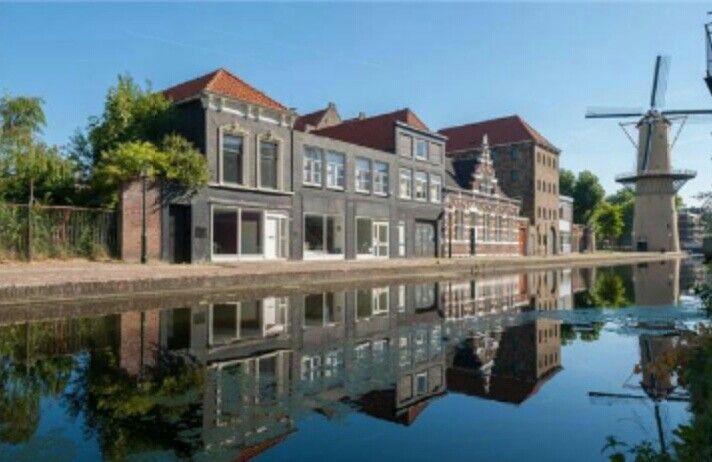 Schiedam noordvestsingel schiedam hoogste molens ter for 4 holland terrace needham ma