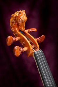 Violons, altos et violoncelles