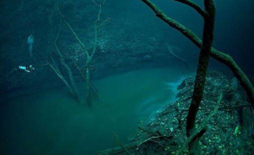 海の怖い写真。海洋恐怖症か分かる画像集     ailovei