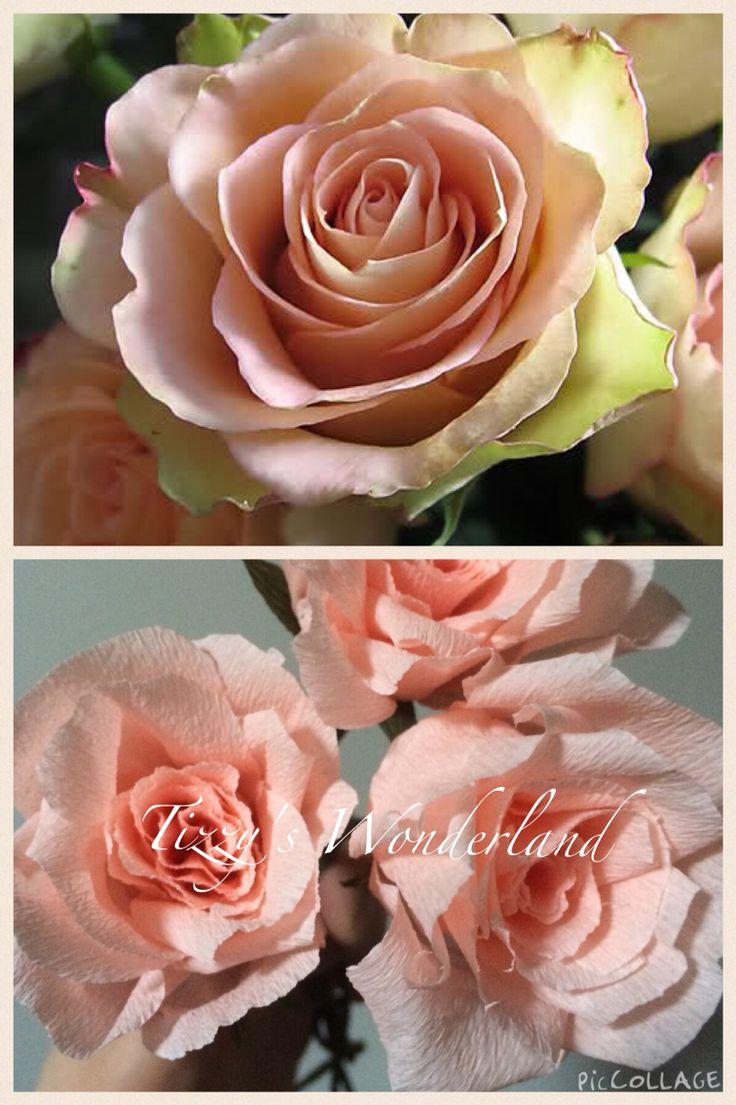Crepe paper pink roses!  Rose rosa in carta crespa!