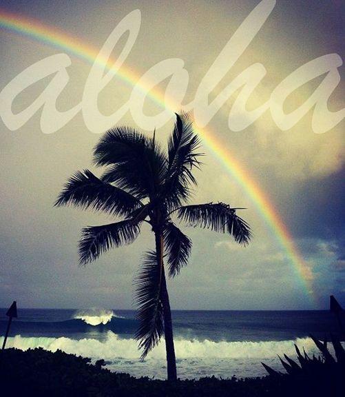 Happy Aloha Friday!!
