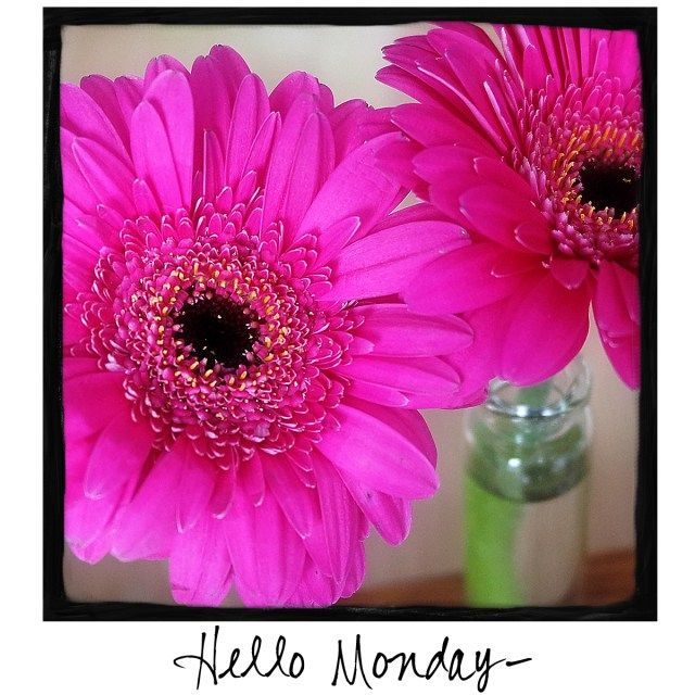 Hello Monday! Come by and visit A Warm Hello! Share a photo with your friends!