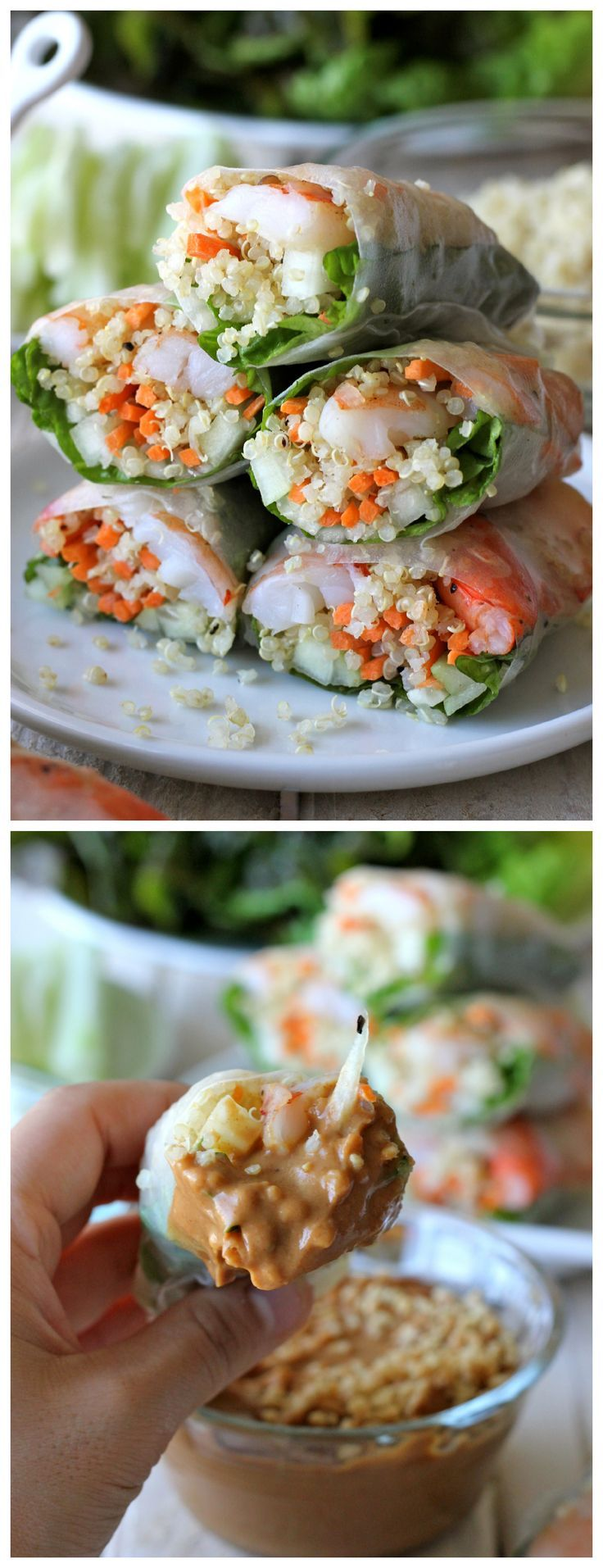 Roasted Shrimp Quinoa Spring Rolls - Quinoa is a wonderful protein-packed substitute for rice noodles in these EASY Spring Rolls! Includes a recipe for  Spicy Peanut Sauce!