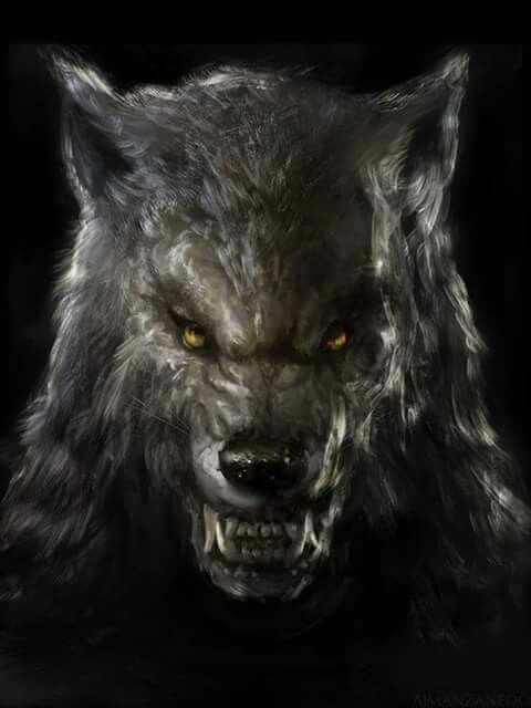 Werewolf                                                                                                                                                                                 More