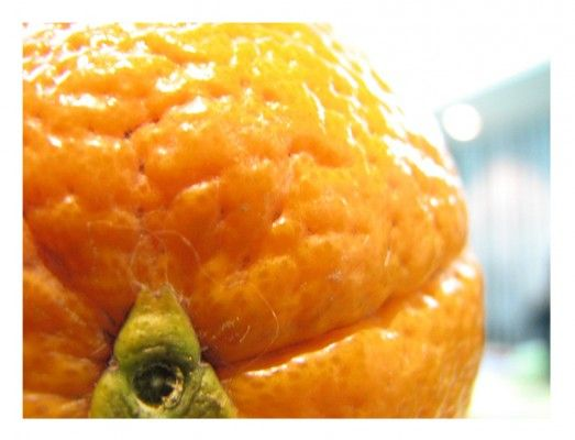 The Importance of Vitamin C for Adrenal Health | Divine Health