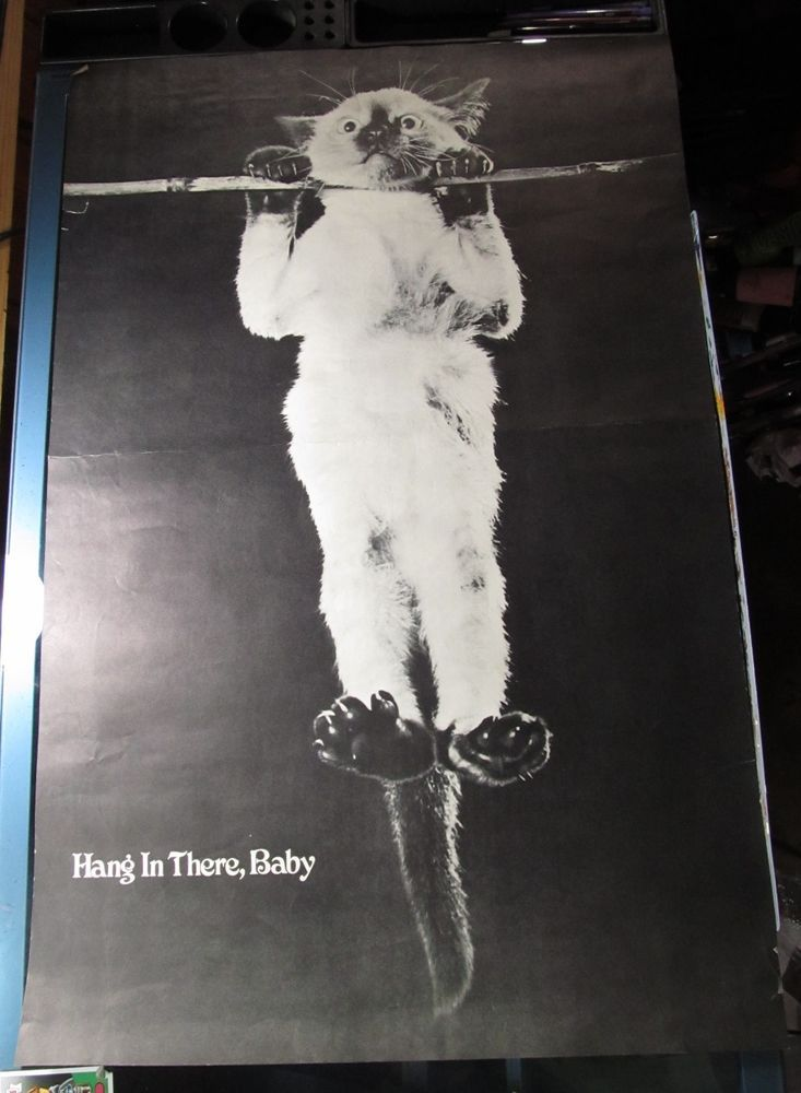 HANG IN THERE BABY VINTAGE CAT POSTER CLASSIC IMAGE BLACK AND WHITE 1970'S