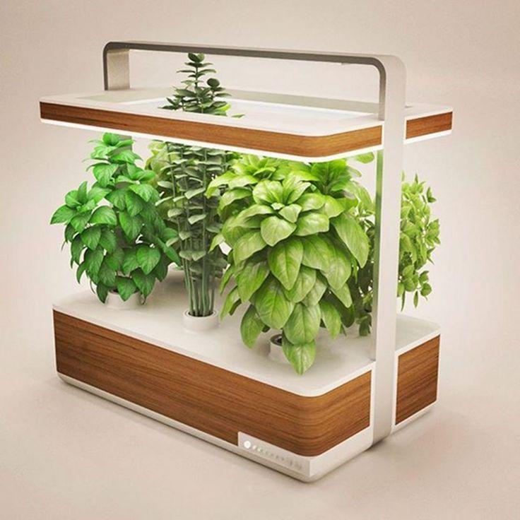 Machen Sie Ihr Zuhause mit 35 besten Indoor-Garten-Ideen frischer