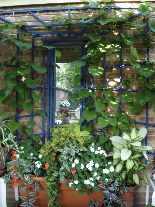 25 beste idee n over tuin spiegels op pinterest buiten spiegel tuin screening en hekwerk - Arbor pergola goedkoop ...