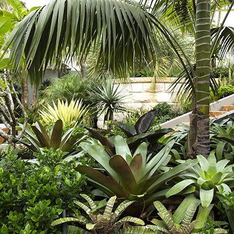 Chistopher Nicholas Garden Design. Beautiful foliage garden. Pinned to Garden Design - Planting Schemes by Darin Bradbury.