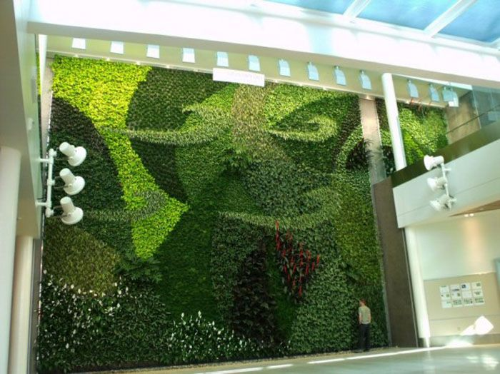 Green Living Wall of Vertical Garden to Create Sustainable Green Interior Design