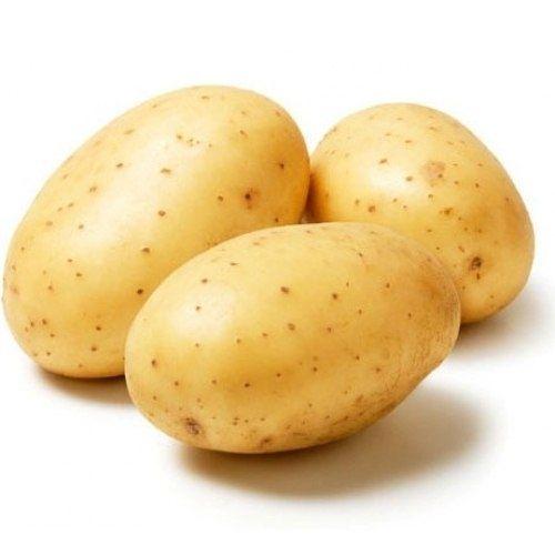 Как уберечь картошку от прорастания 0