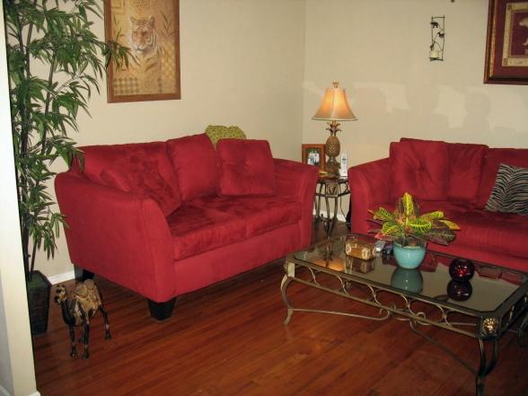 Tropical/Safari Themed Living Room
