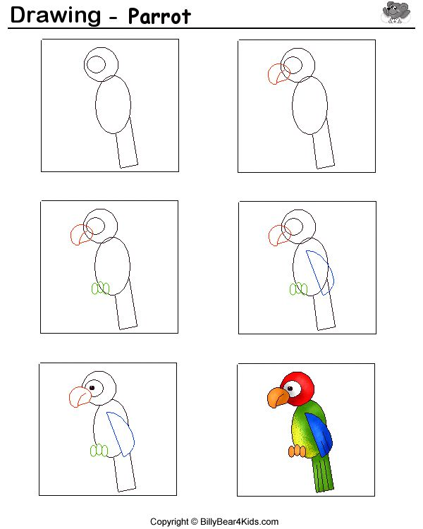 drawing sheet parrot billybear4kidscom - Kids Drawing Sheet