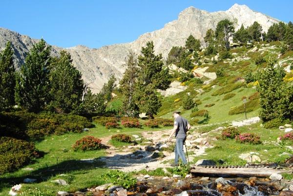 Trip to the Catalan Pyrenees   Excursión en el Pirineo catalán   Excursió al…