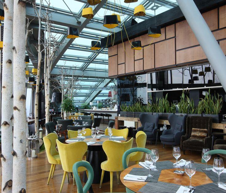 Дизайн-проект панорамного ресторана с желтыми, зелеными и красными креслами и березами в кадках