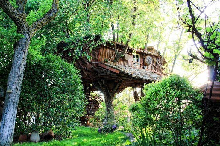 """""""La Casita del árbol"""", una cabaña en un árbol 100% rústica"""