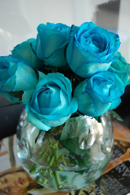 Rosas azuis                                                                                                                                                                                 Mais