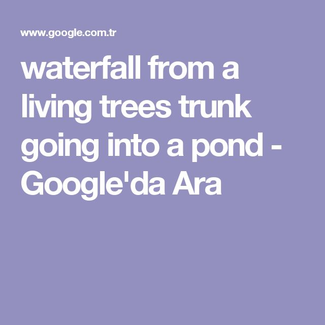 waterfall from a living trees trunk going into a pond - Google'da Ara