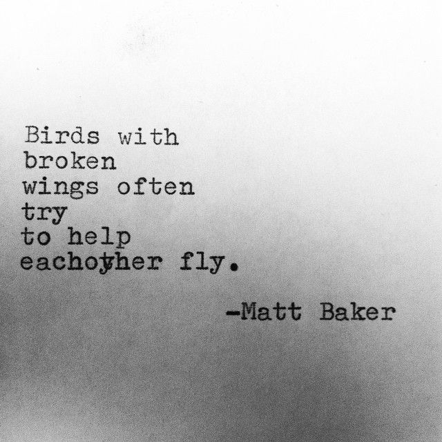 Birds with broken wings often try to help each other fly. -
