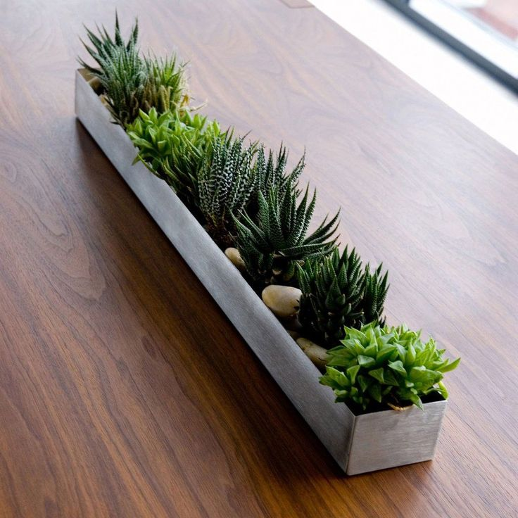 """Fruit Trough - 30""""W x 3""""D x 2""""H Originally designed as an accessory to store and display fruit, this versatile, watertight vessel also works well as a simple indoor/outdoor planter for succulents or h"""
