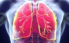 Como eliminar la nicotina del cuerpo (de los pulmones) de forma natural con alimentos y suplementos