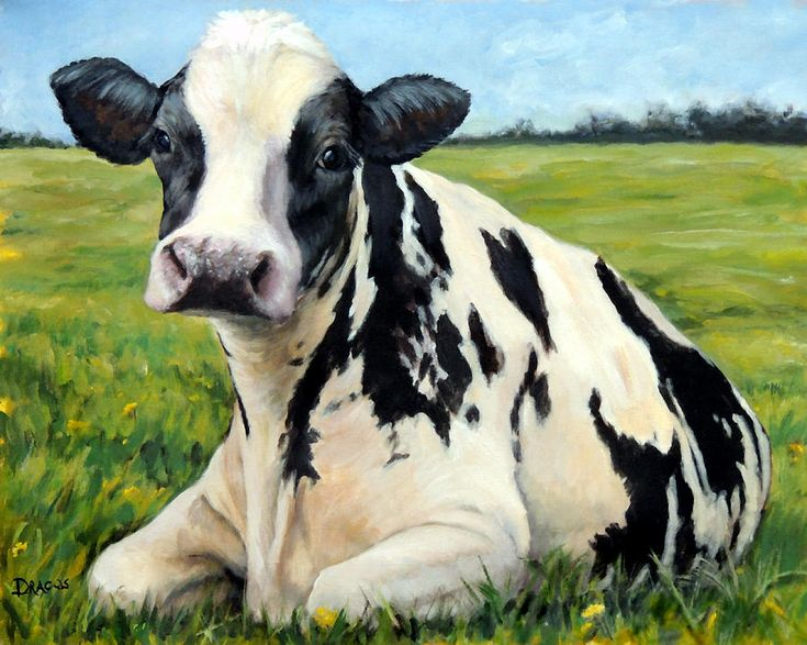 Holstein Cow Relaxing In Field Painting by Dottie Dracos