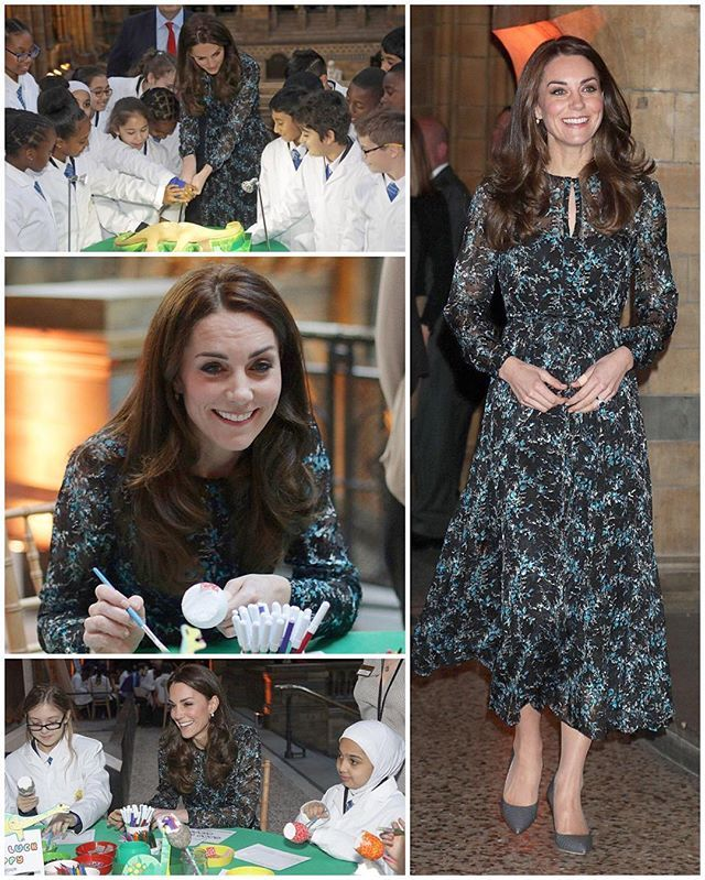 The Duchess made an appearance at a children's tea party at the Natural History Museum this afternoon.  The event was embargoed, likely because the museum remained opened during her visit.  Kate joined children from Oakington Manor School to celebrate and farewell Dippy the iconic diplodocus on his U.K. tour. The replica dinosaur - one of ten in the world - is an impressive 4.25 metres high and 21.3 metres long. It has stood in the museum's entrance hall for 37 years.  The children were…