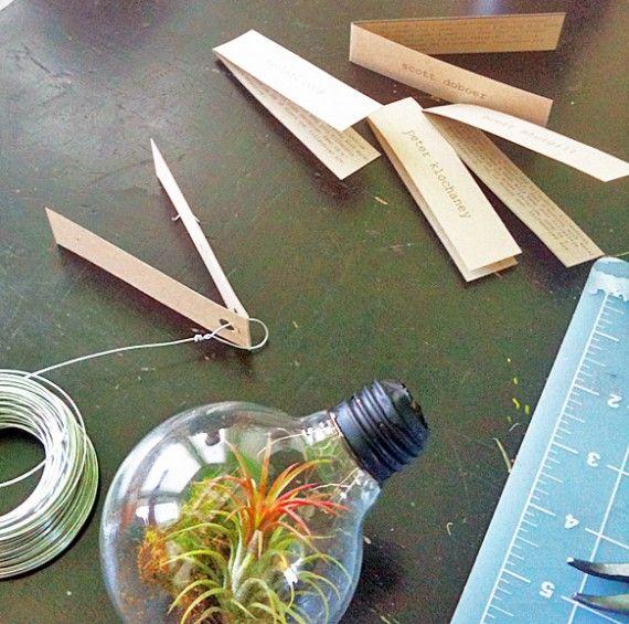 Light bulb terrarium tutorial