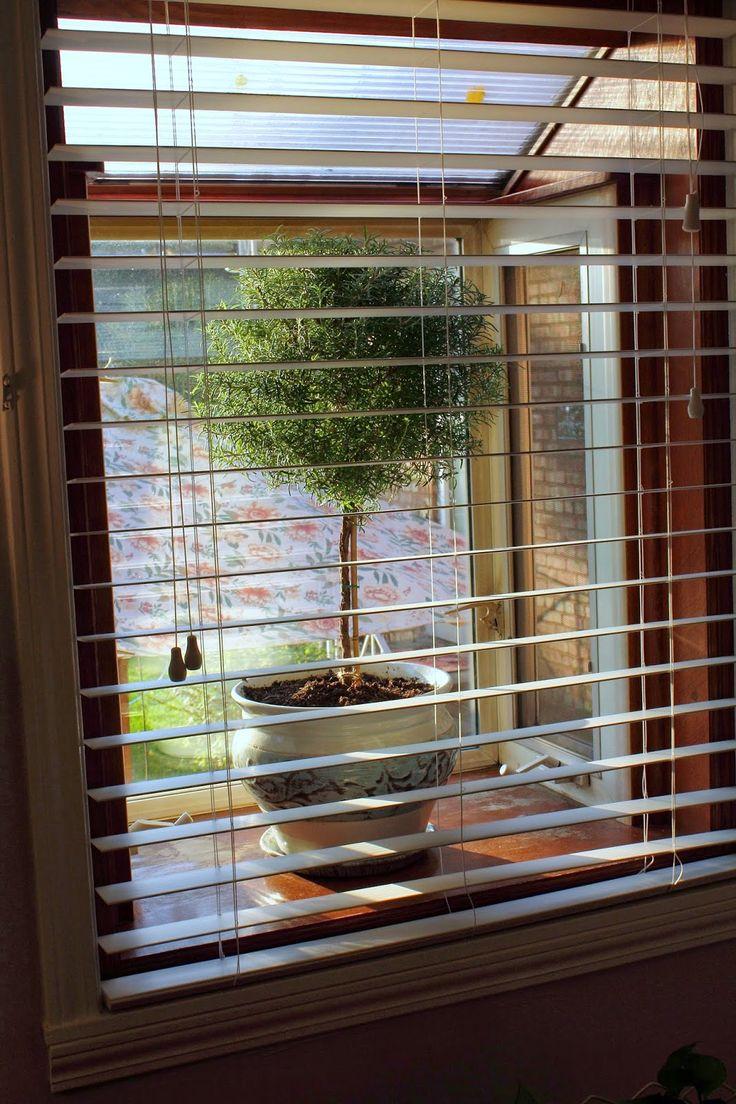 Best 25 Vertical Window Blinds Ideas On Pinterest