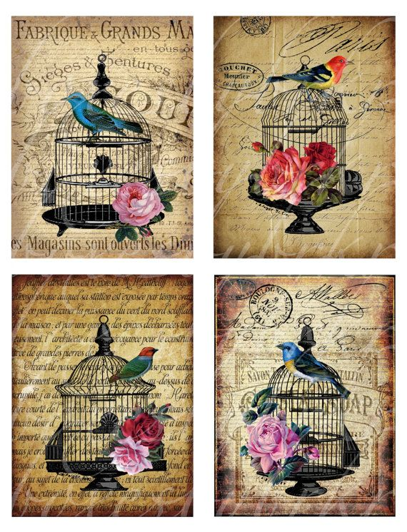 immediate download of four different bird cage by boxesbybrkr