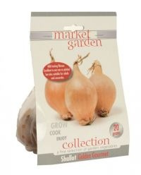 £1.00 - Market Garden Collection Vegetables Shallot Golden Gourmet  Mild tasting flavour, excellent to eat raw or pickled. Also suitable for salads and casseroles. This is part of the grow, cook and enjoy collection, a fine selection of garden vegetables. 20g of bulbs.
