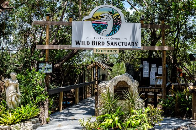 Wild Keys Bird Sanctuary, from my guest blog post on www.AuthenticFlorida.com Photo: Zickie Allgrove