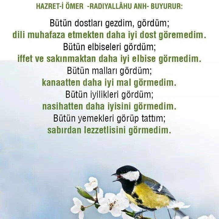 #hzömer #dost #dil #elbise #iffet #mal #kanaat #iyilik #nasihat #yemek #lezzet #sabır #sözler #türkiye #istanbul #rize #trabzon #eyüp #ilmisuffa