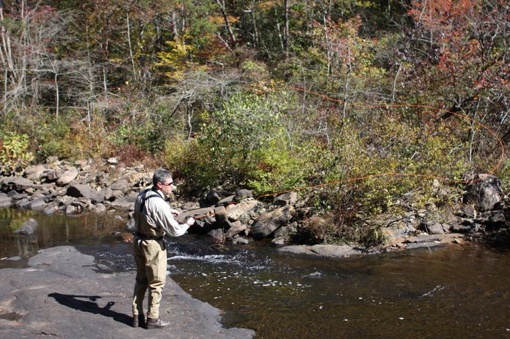17 best images about fly fishing at desoto state park on for Trout fishing in alabama