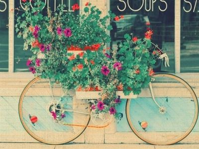 such great colors and a great idea: Bicycles, Shabby Chic Photography, Mint Green, Flower Planters, Colors, Summer Pictures, Gardens, Old Bikes, Flower Boxes
