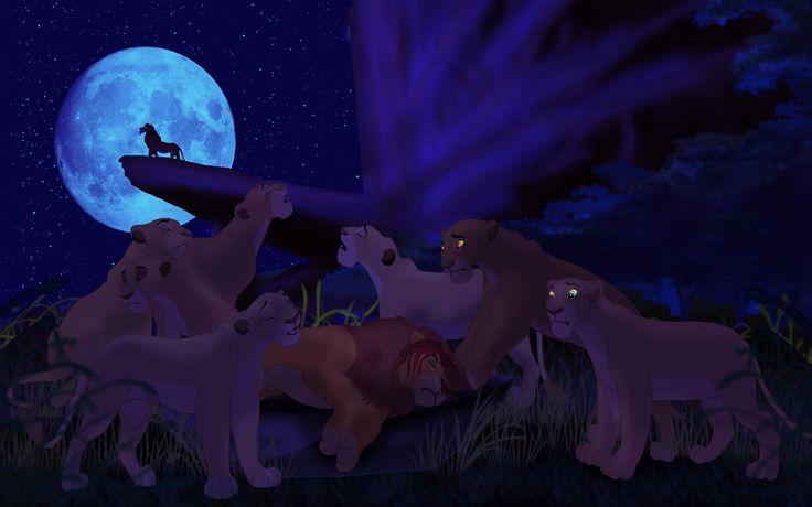 King Died By Sanio Deviantart Com On Deviantart My Lion