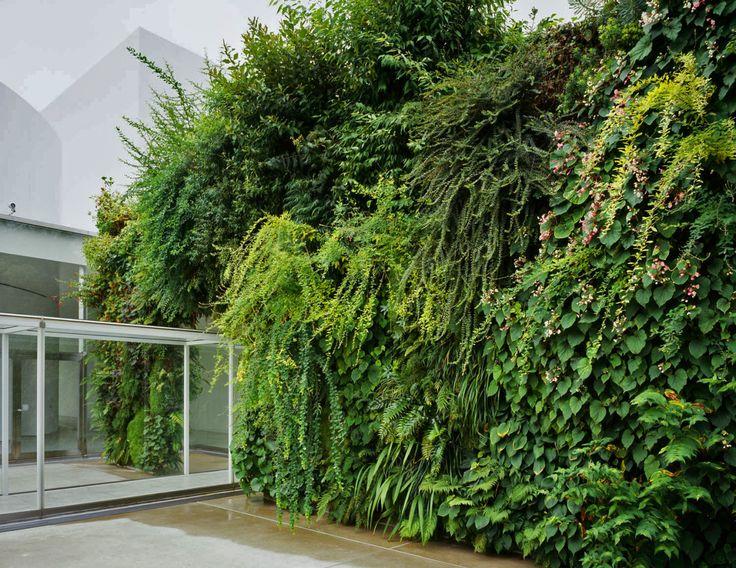 Century Museum Of Contemporary Art, Kanazawa:Green Bridge