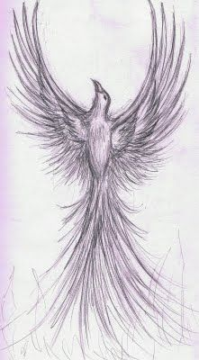 """Hd phoenix bird drawings in pencil pic is one of our picture from our gallery.You able to save this picture with """"save as"""" (right click the image). Please"""