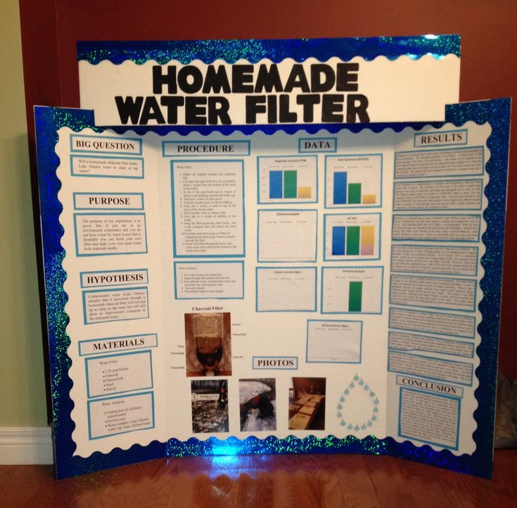 Science fair project display board                                                                                                                                                                                 More