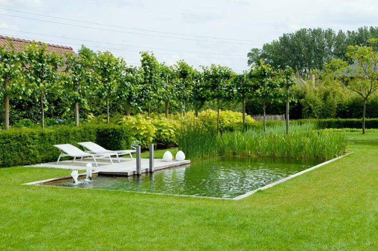 Tuin-ontwerp.eu: Tuinarchitect Rik Hiergens | budgetvriendelijk tuinontwerp…