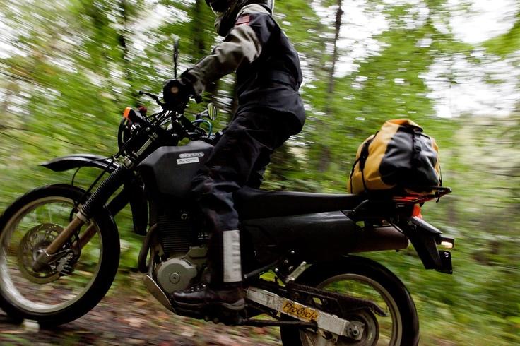 Exploring Monongahela National Forest on a Suzuki DR650. Photo by Kristen Massucci.