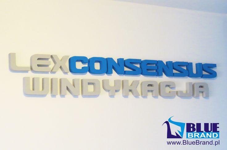 logotyp wewnętrzny ze styroduru - projekt i wykonanie www.BlueBrand.pl #BlueBrand #AgencjaReklamowa #reklama