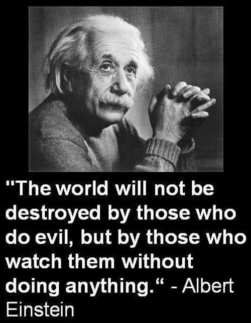 The world will not be destroyed by those who do evil, but by those who watch them without doing anything. - Albert Einstein