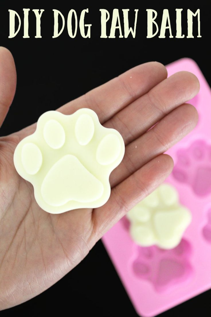 Craft this natural DIY dog paw balm to soothe and protect your pet's paws! Plus perfect pet gifts for pets and their owners you have to see!
