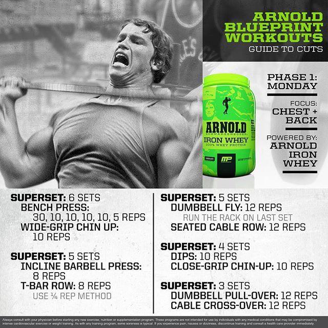 24 best Arnold Schwarzenegger Olympia Training Secrets of the Oak - new arnold blueprint app